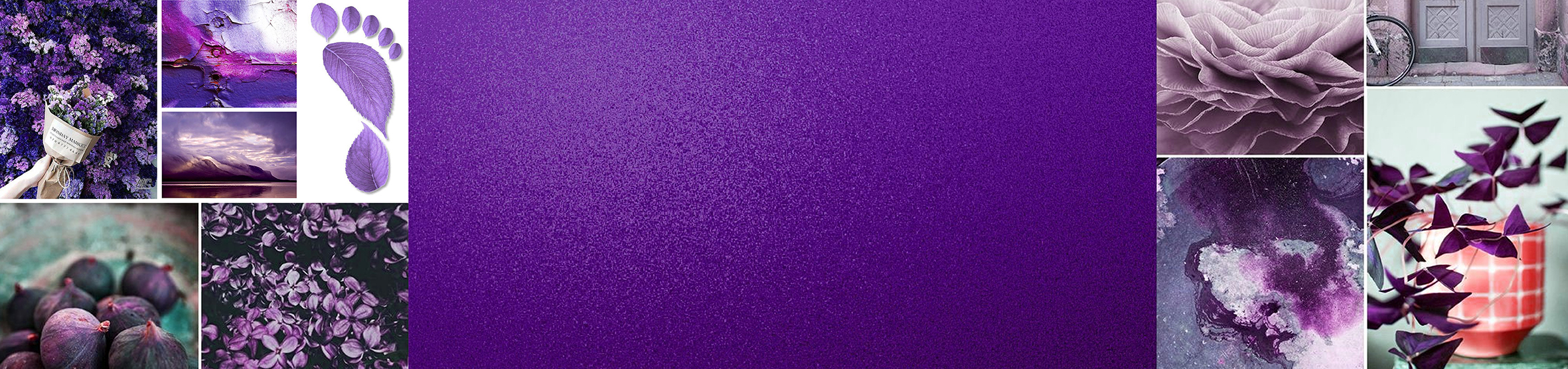 The Pantone Color for 2018 - The future is purple